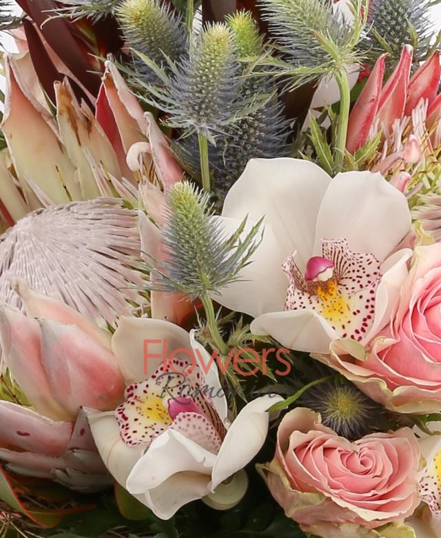 2 leucadendron roșu, 3 trandafiri roz, 2 eryngium, cymbidium, 2 proteea roșie, 3 astilbe rosii, 2 gerbera roz, 5 salal, cuib
