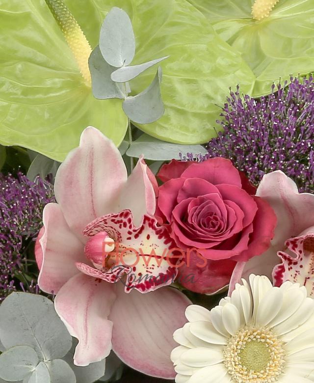 2 anthurium verde, 3 gerbera alba, 3 trandafiri ciclam, 2 trachelium mov, 3 cupe orhidee roz, 5 santini verde, 3 alstroemeria roșie, 2 frunze black tide, 2 eucalypt, 5 salal