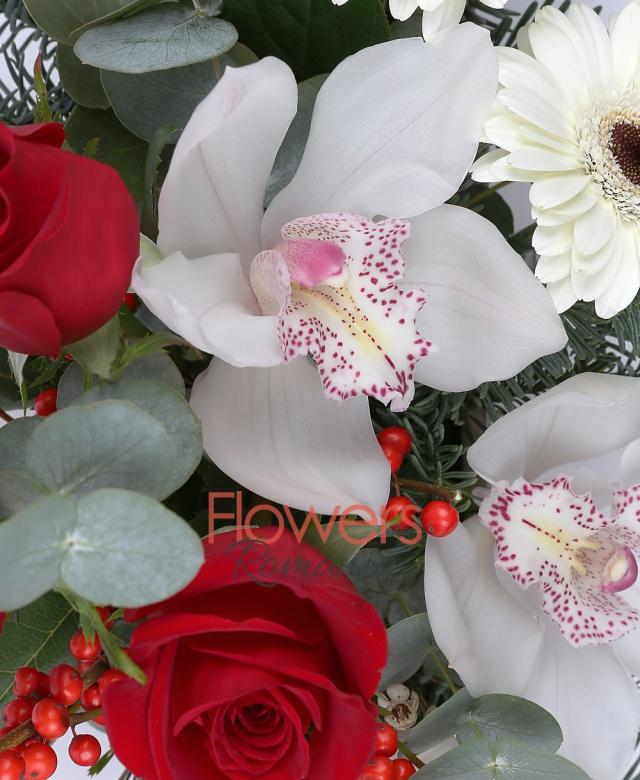 3 trandafiri rosii, 1 cupa cymbidium alb, 3 gerbera alba, ilex, waxflower, brad, eucalypt, vas ceramic