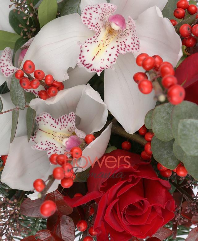 3 trandafiri rosii, 1 cymbidium alb, ilex, eucalypt, brad, cutie