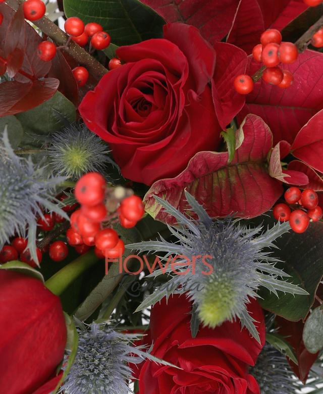 3 trandafiri rosii, 1 poisentia rosie, 3 eryngium, 3 gerbera albe, ilex, brad, eucalypt, cutie