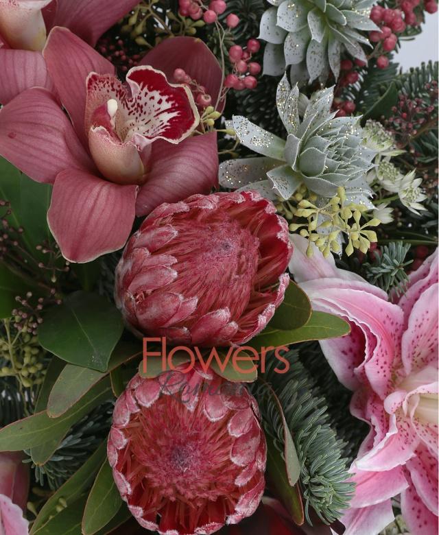 2 proteea rosii, 2 leucadendron, 2 crin imperial roz, 3 cupe orhidee rosii, 2 schimia, 2 echeveria albe, 1 piper, brad, astranția, eucalypt, vas ceramic