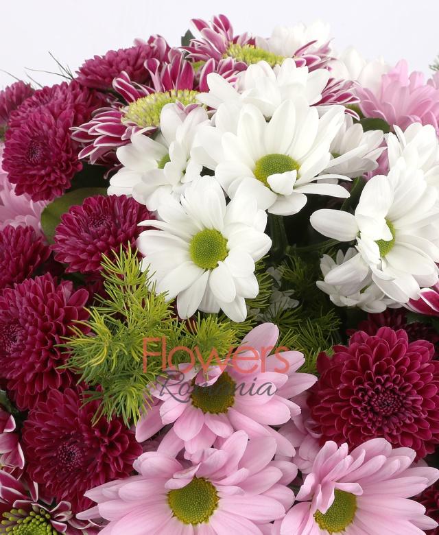 4 crizanteme mov bicolore, 3 crizanteme roz, 3 crizanteme albe, 3 santini grena, asparagus, aspidistra, salal