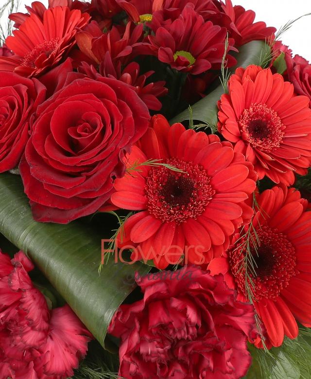 4 red gerbera, 4 red roses, 2 burgundy chrysanthemums, 7 red carnations, greenery