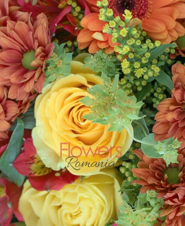 5 trandafiri galbeni, 3 leucospermum, 6 crizanteme portocalii, 6 gerbera portocalie, 5 miniroze portocalii, 5 alstroemeria rosii, 3 fire solidago galbene, salal