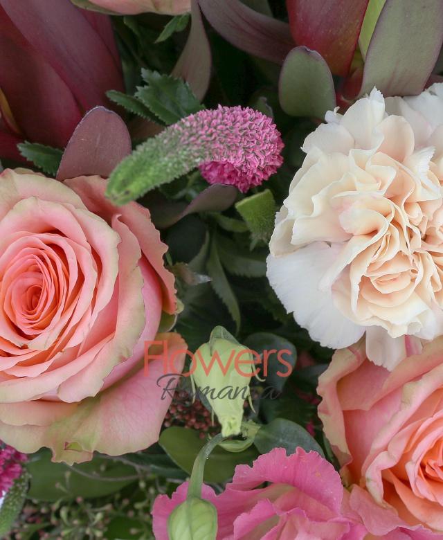 5 trandafiri banan, 3 garoafe crem, 3 fire lisianthus roz, 5 veronica roz, 3 leucadendron roșu, schimia, salal, cuib