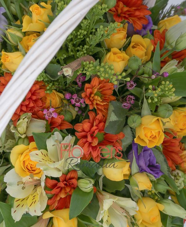 10 miniroze galbene, 5 santini portocalii, 5 alstroemeria galbene, 3 lisianthus mov, 2 solidago, 1 waxflower, salal, coș