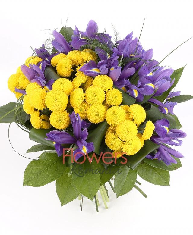 10 purple iris, 5 yellow chrysanthemum, greenery