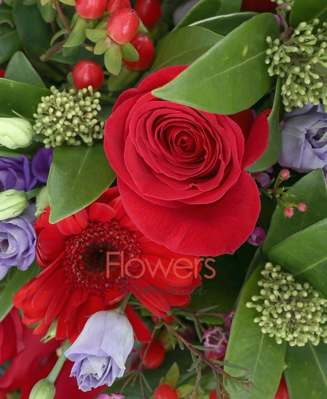 9 trandafiri rosii, 7 gerbera rosii, 5 lisianthus mov, 5 hypericum roșu, 2 waxflower, 2 schimia, salal