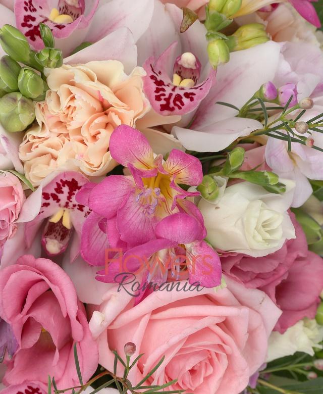 3 garoafe crem, 3 trandafiri roz, 5 frezii roz, 3 lisianthus roz, 2 lisianthus alb, 3 miniroze roz, 2 alstroemeria roz, cymbidium alb, waxflower roz, salal, carte