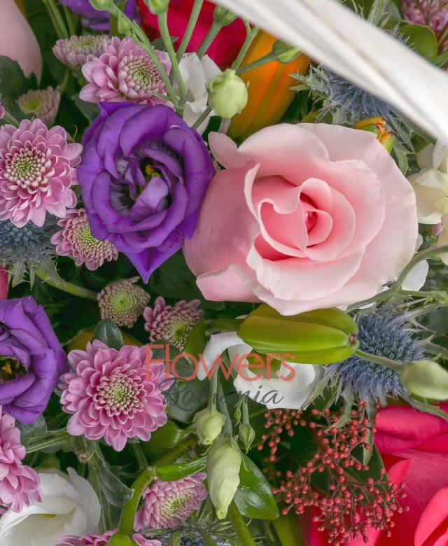 3 crini portocalii, 4 trandafiri roz, 3 trandafiri ciclam, 5 santini mov, 2 eryngium, 3 lisianthus mov, 2 lisianthus alb, schimia, salal, coș