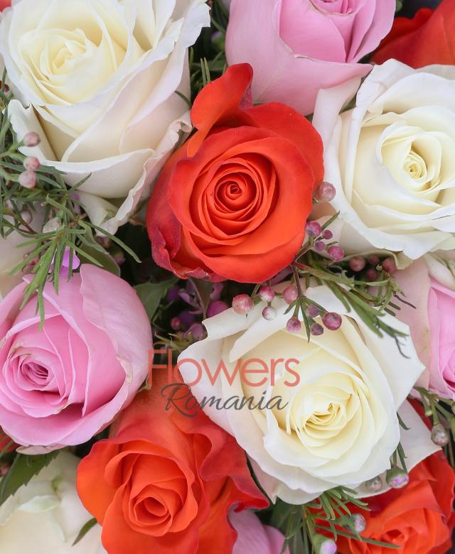7 trandafiri rosii, 7 trandafiri albi, 7 trandafiri roz, waxflower, aspidistra