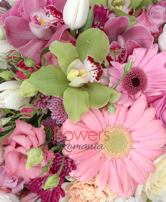 cymbidium grena, cymbidium verde, 5 lisianthus alb, 4 trandafiri albi, 4 santini mov, 4 lisianthus roz, 3 trandafiri roz, 5 garoafe ciclam, 4 garoafe roz, 4 gerbera roz, 3 miniroze roz, 2 alstroemeria mov,  5 lalele albe, salal, coș