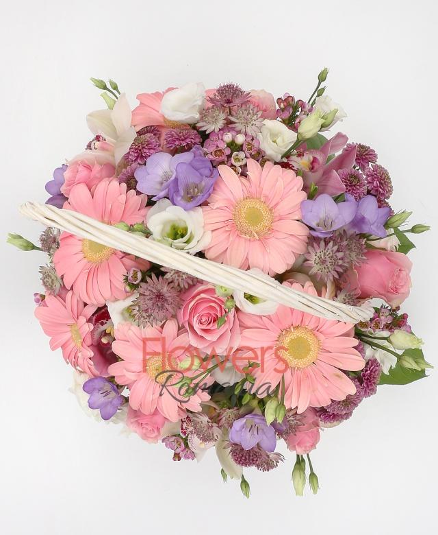 6 pink gerbera, 5 pink santini, 5 pink rose, 4 white lisianthus, astranția, 5 purple freesia, cymbidium, white cymbidium, greenery