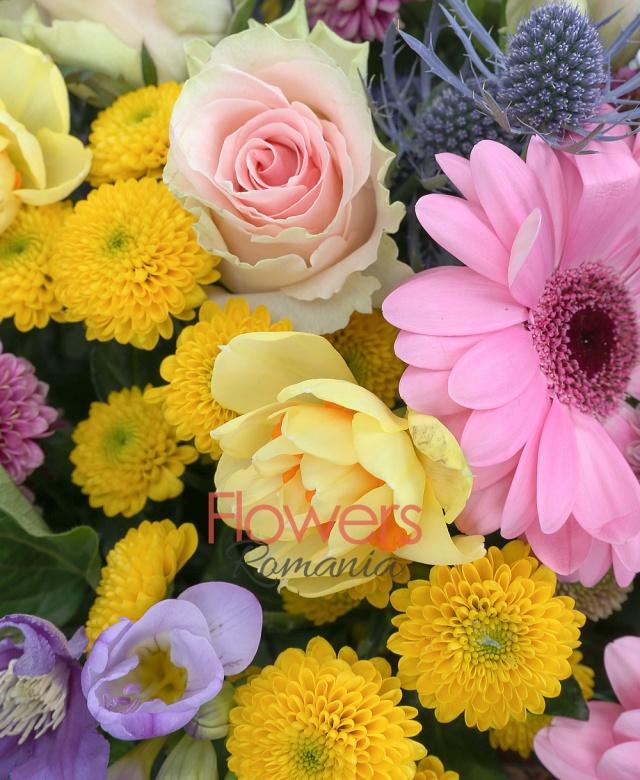 2 gerbera roz, 2 trandafiri roz, 3 trandafiri banan, 4 santini galben, 4 santini mov, 3 eryngium, 7 frezii galbene, 2 clematis, salal, cuib