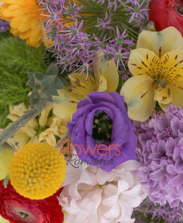zambile multicolore, 2 allium, 4 gerbera galbene, 2 lisianthus mov, 3 alstroemeria galbenă, 2 craspedia, 2 lisianthus mov, 3 ranunculus roșu, limonium mov, 3 garoafe verzi, eucalypt, coș