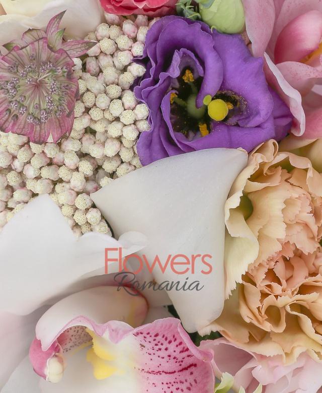 3 garoafe crem, 2 lisianthus roz, 2 miniroze roz, 1 lisianthus mov, 1 lisianthus grena, cymbidium roz, cymbidium alb, 1 crizantemă verde, astranția roz, floare de orez, cutie