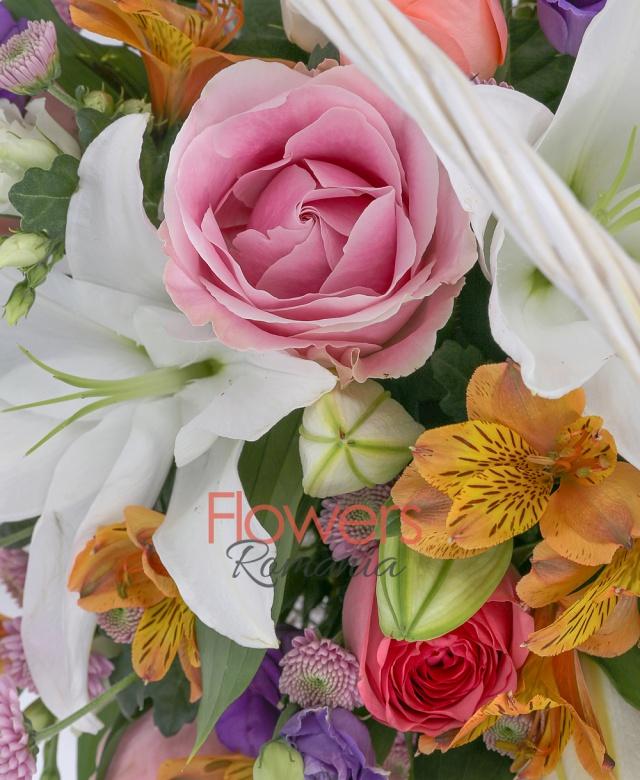 2 crini alb, 3 trandafiri cyclam, 4 trandafiri roz, 4 alstroemeria portocalie, 5 santini roz, 3 lisianthus mov, 3 lisianthus alb, coș