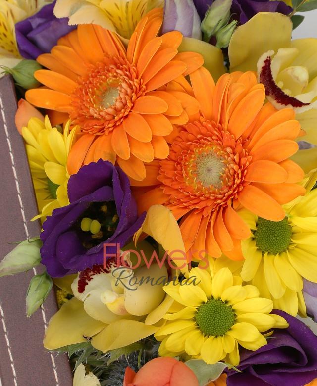 3 gerbera portocalii, 3 lisianthus mov, 1 alstroemeria galbenă, 1 solidago, 1 miniroza portocalie, cymbidium galben, 1 eryngium, eucalypt, cutie