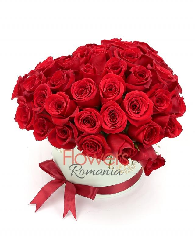 43 red roses, box