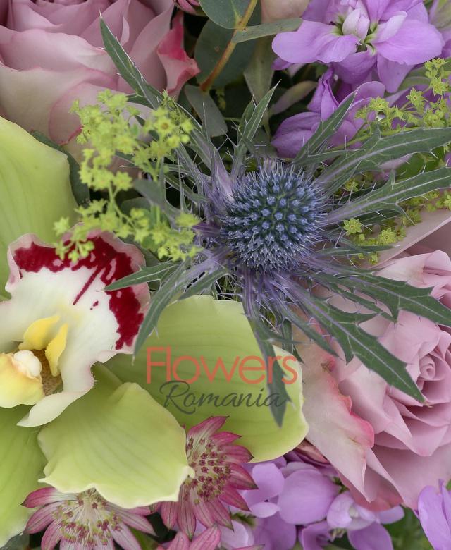 3 trandafiri mov, 3 matthiola mov, 3 frezii mov, 2 eryngium, cymbidium verde, bupleurum, astranția roz, eucalypt, cutie