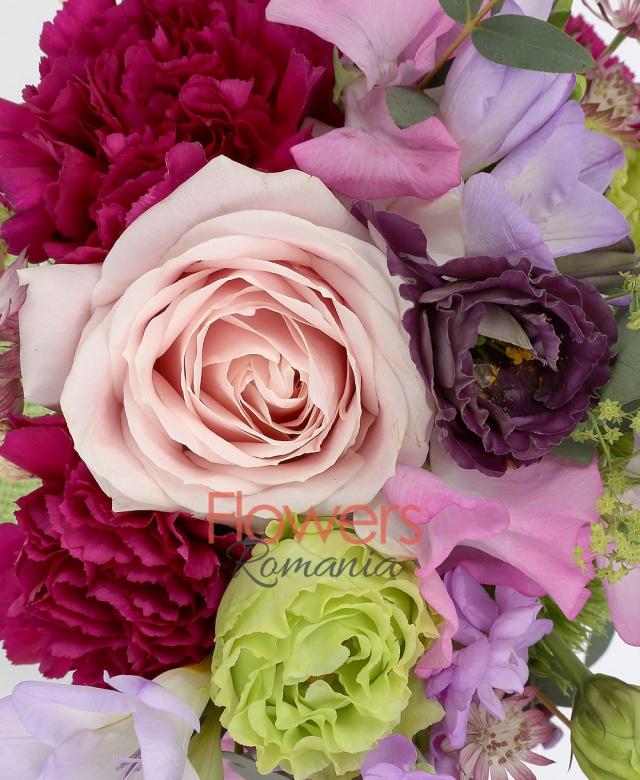 2 matthiola mov, 3 frezii mov,  trandafir roz, 3 garoafe cyclam, 2 lathyrus, 1 lisianthus verde, 1 lisianthus mov, 1 garoafa verde, astranția, bupleurum, eucalypt, săculeț