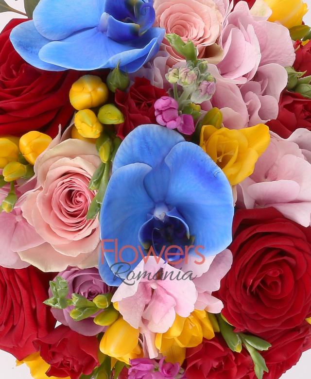 hortensie roz, 7 mathiolla cyclam, 7 frezii galbene, 3 miniroze rosii, 7 trandafiri roz, 9 trandafiri mov, 2 lisianthus alb, orhidee albastră phalaenopsis, eucalypt