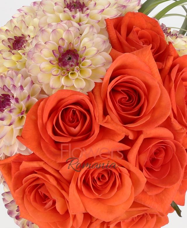 11 trandafiri portocalii, 10 dalii, stilgrass