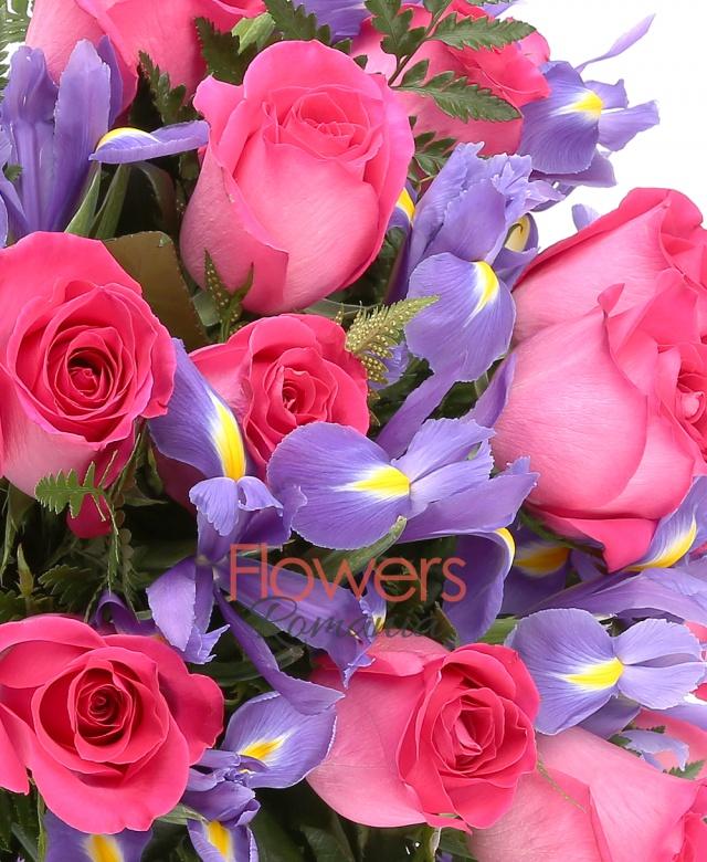 13 trandafiri ciclam, 14 iris, ferigă