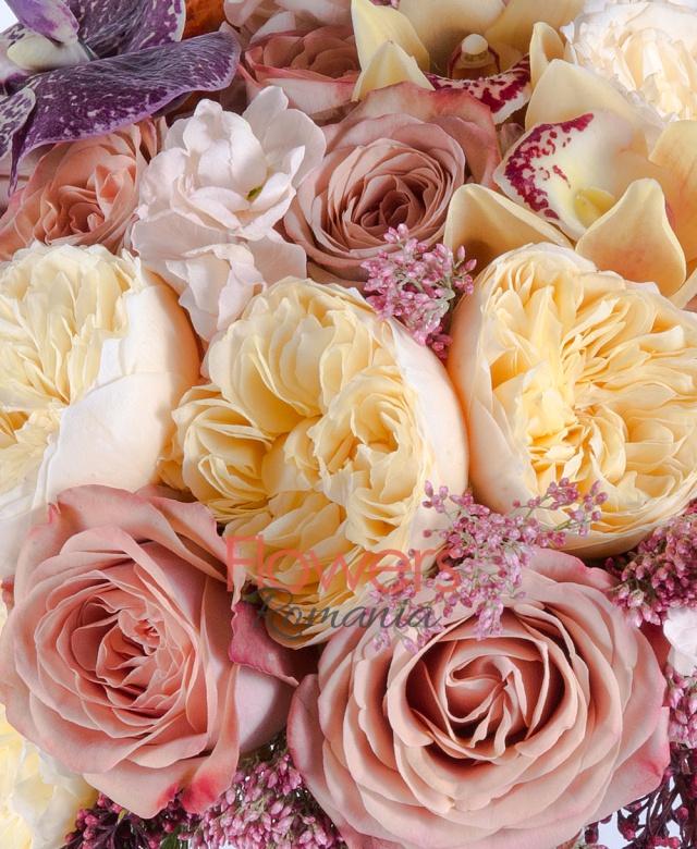 10 trandafiri cappucino, 10 trandafiri gold, 5 celosia portocalie, 7 fire floare orez, 10 matthiola crem, cymbidium, orhidee vanda