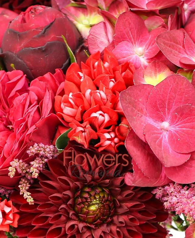 3 hortensii rosii, 7 dalii grena, 10 bouvardia rosii, 10 astranția rosii, 5 trandafiri piano roșu