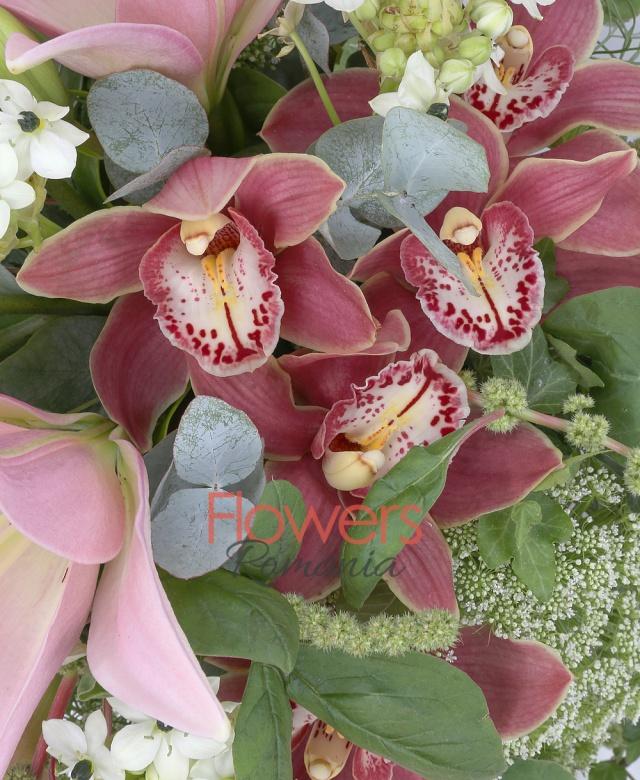 cymbidium grena, 2 crini roz, 3 cale mov, 5 ornitogalum, 4 trachelium alb, iedera, verdeață, vas