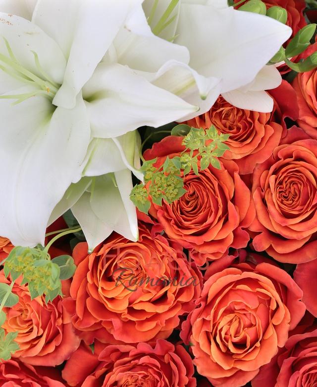 60 trandafiri rosii, 2 crini imperiali albi, 5 frezii, suport inima