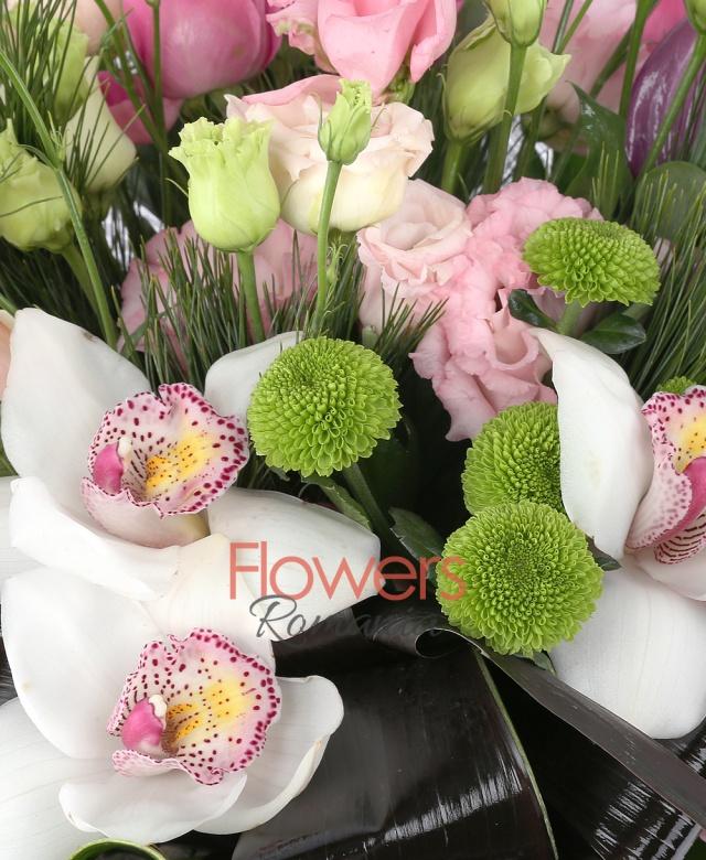3 trandafiri crem, 1 cymbidium alb, 1 anthurium mov, 3 lisianthus roz, 2 miniroza roz, 2 alstroemeria roz, 1 santini verde, monstera, pin, black tay