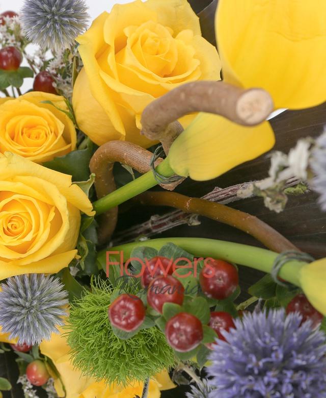 5 trandafiri galbeni, 4 cale galbene, 3 hypericum, 2 dianthus gri, echinox, black tide, burete, vas ceramic