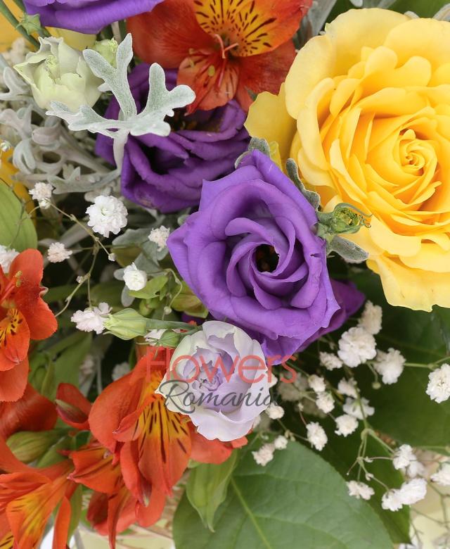 3 trandafiri galbeni, 5 lisianthus mov, 2 alstroemeria portocalii, 1 gypsophila, 5 senecio, salal, cuib