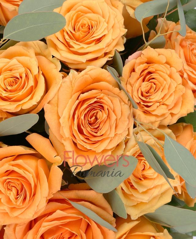 35 trandafiri portocalii, eucalypt, salal, cutie
