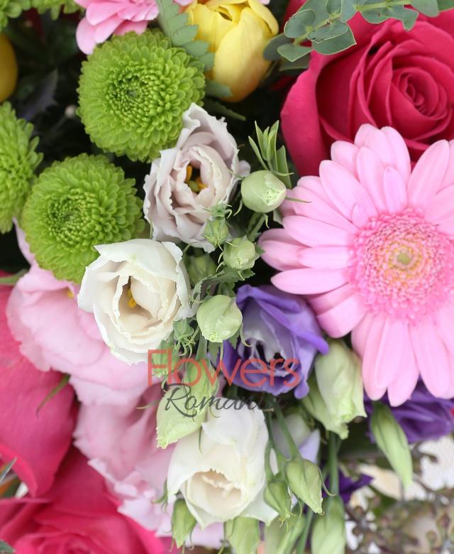 5 trandafiri cyclam, 2 lisianthus alb, 5 lalele galbene, 2 eryngium, 3 gerbera crem, 3 gerbera roz, 3 miniroze roz, 3 lisianthus roz, 5 lalele galbene, 1 santini verde, eucalypt