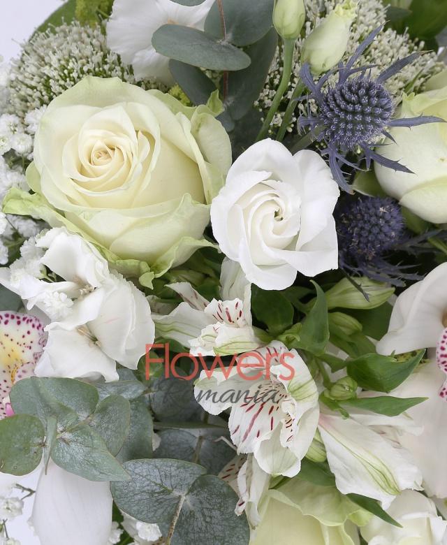 3 trandafiri albi, 3 lisianthus alb, 5 alstroemeria alba, 2 eryngium alb, 3 trachelium alb, garofițe, gypsophila, cymbidium, bupleurum, eucalypt, salal