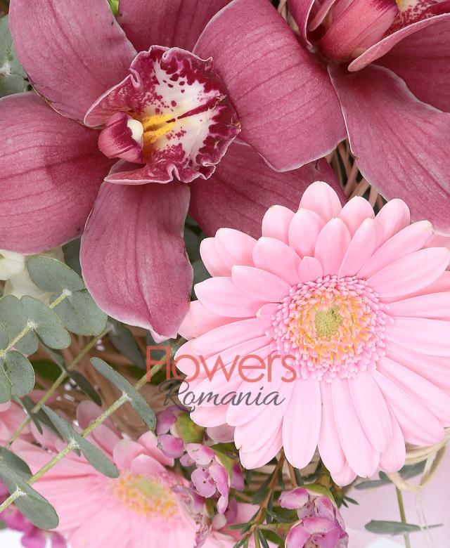 3 gerbera roz, 2 antirrhinum, 3 lisianthus, cymbidium, waxflower, eucalypt, aspidistra, salal, cuib
