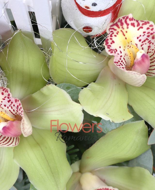 3 trandafiri rosii, 3 cymbidium, 5 frezii, 1 lisianthus alb, waxflower, eucalypt, brad argintiu, decoratiuni, cos
