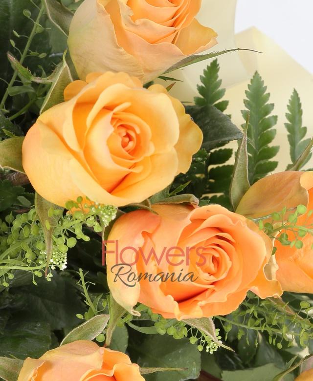 25 trandafiri crem, thsalpi, ferigă, salal