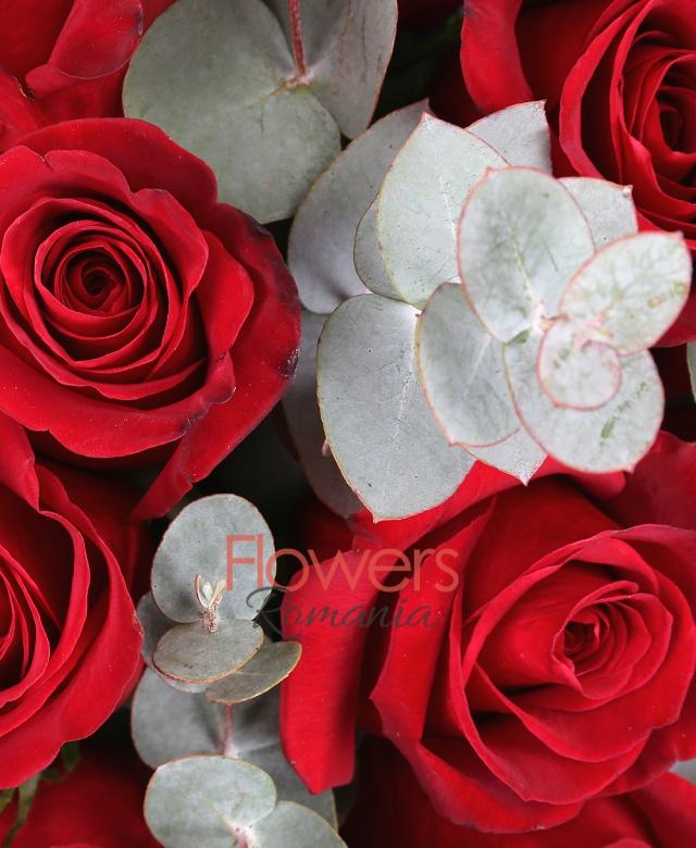 31 trandafiri rosii, eucalipt, cutie