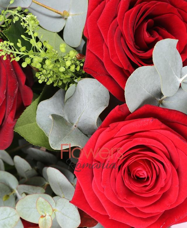 7 trandafiri rosii, eucalypt, salal