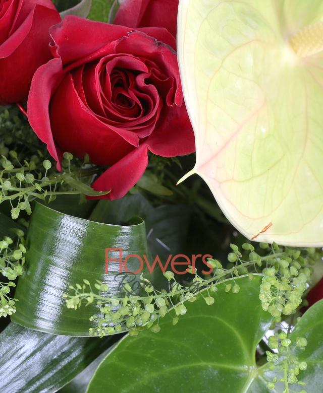 21 trandafiri rosii, anthurium, aspidistra, tshalpi