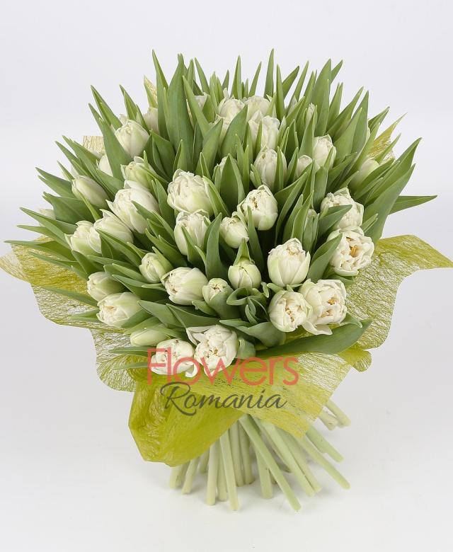 49 white tulips
