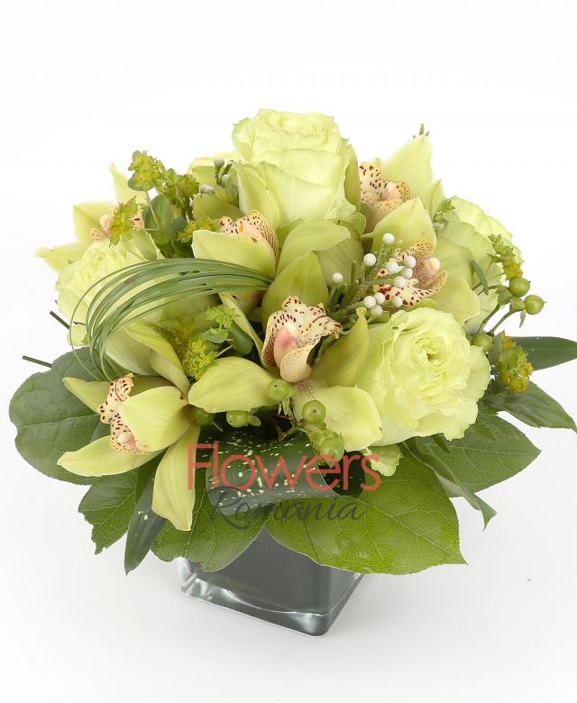 5 white roses, 1 green cymbidium, brown, 5 green hypericum, greenery