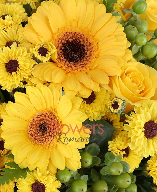 7 trandafiri galbeni, 6 gerbera galbene, 10 santini galbene, 6 hypericum verde