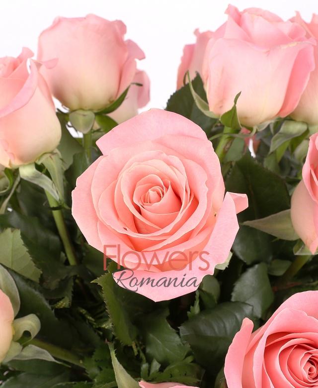 19 trandafiri roz