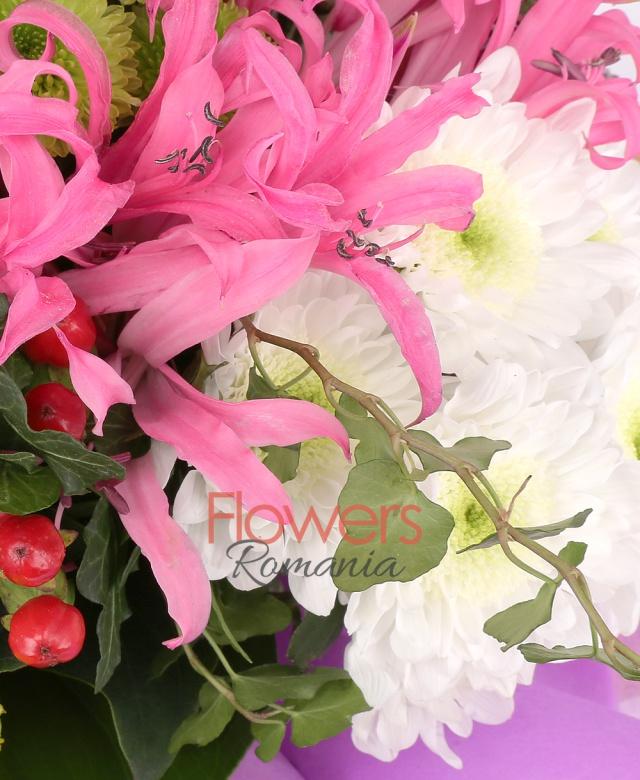 3 trandafiri alb, 3 garoafe banan, 3 crizanteme alb, 7 nerine, 3 santini verde, 3 solidago, 3 hypericum roșu, asparagus. iedera, corylus, salal, monstera